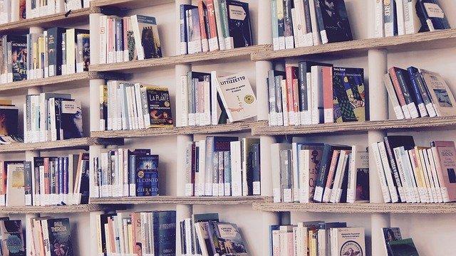 pmp-libros